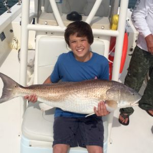 Bull Redfish on Hilton Head
