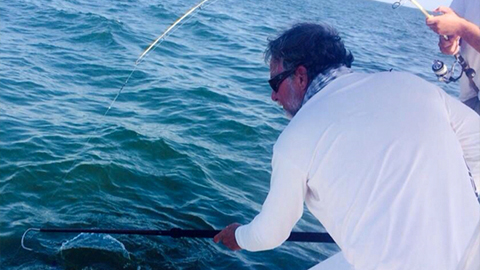 catch cobia