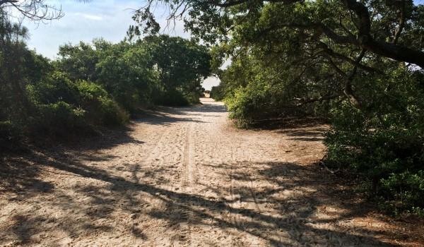 Chaplin Community Park on Hilton Head Island Beach Access