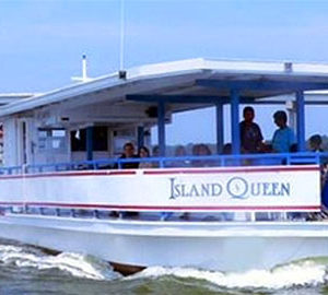 Dolphin & Nature Cruises