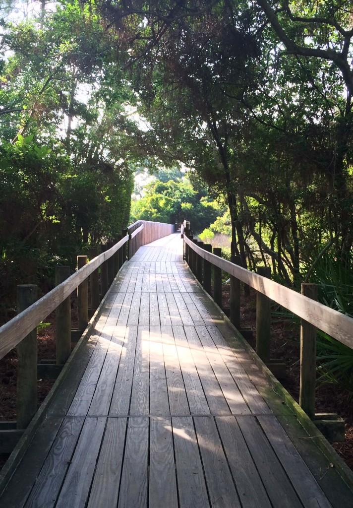 drie path to beach 1 c