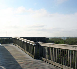 Coligny Beach Park - Hilton Head, SC | HiltonHead com