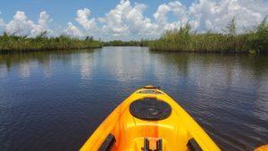 Kayaking through marsh grass.