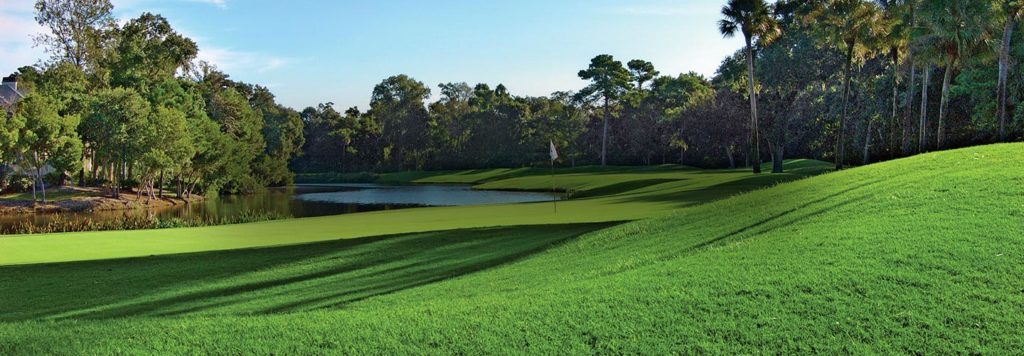 golf at palmetto dunes