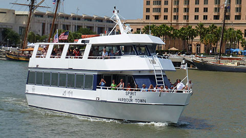 Vagabond Savannah Day Cruise