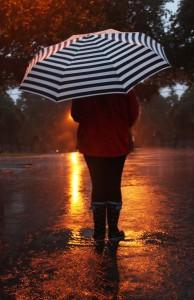 umbrella3 lq